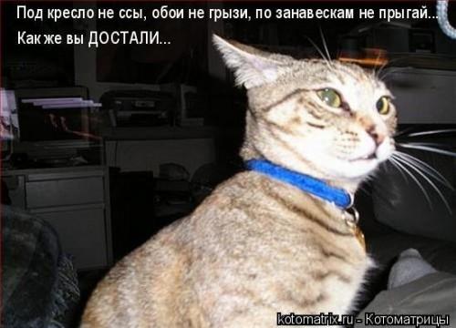 http://becti.net/uploads/posts/2008-02/becti_net_r245376d29t184456n21.jpg