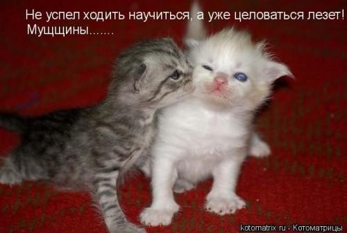 http://becti.net/uploads/posts/2008-02/becti_net_r245376d29t184503n28.jpg