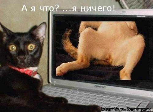http://becti.net/uploads/posts/2008-03/becti_net_r105182d07t204434n8.jpg