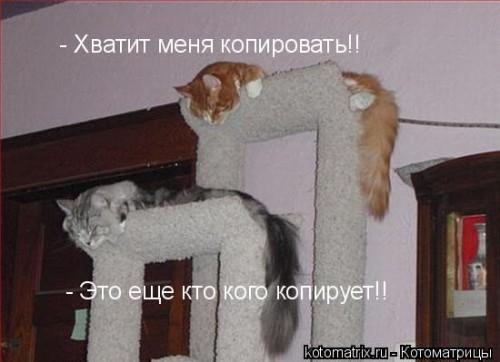 http://becti.net/uploads/posts/2008-03/becti_net_r105182d07t204514n49.jpg