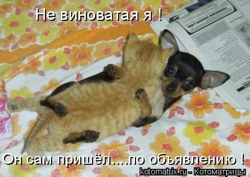 http://becti.net/uploads/posts/2008-04/becti_net_r755256d30t82646n47.jpg