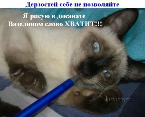 http://becti.net/uploads/posts/2008-05/thumbs/becti_net_r657261d07t164523n16.jpg