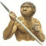 Новые тайны Homo erectus