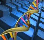 ДНК-компьютер