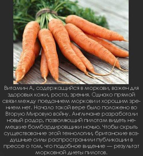 Знаете ли вы, что? – Интересные факты - Страница 5 Becti_net_r473291d27t40213n14