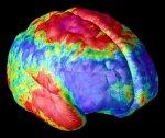 Ученые нашли способ электронной записи и расшифровки снов