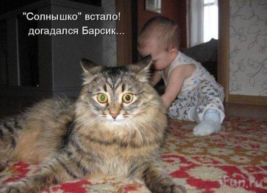 Ребенок играет с котом